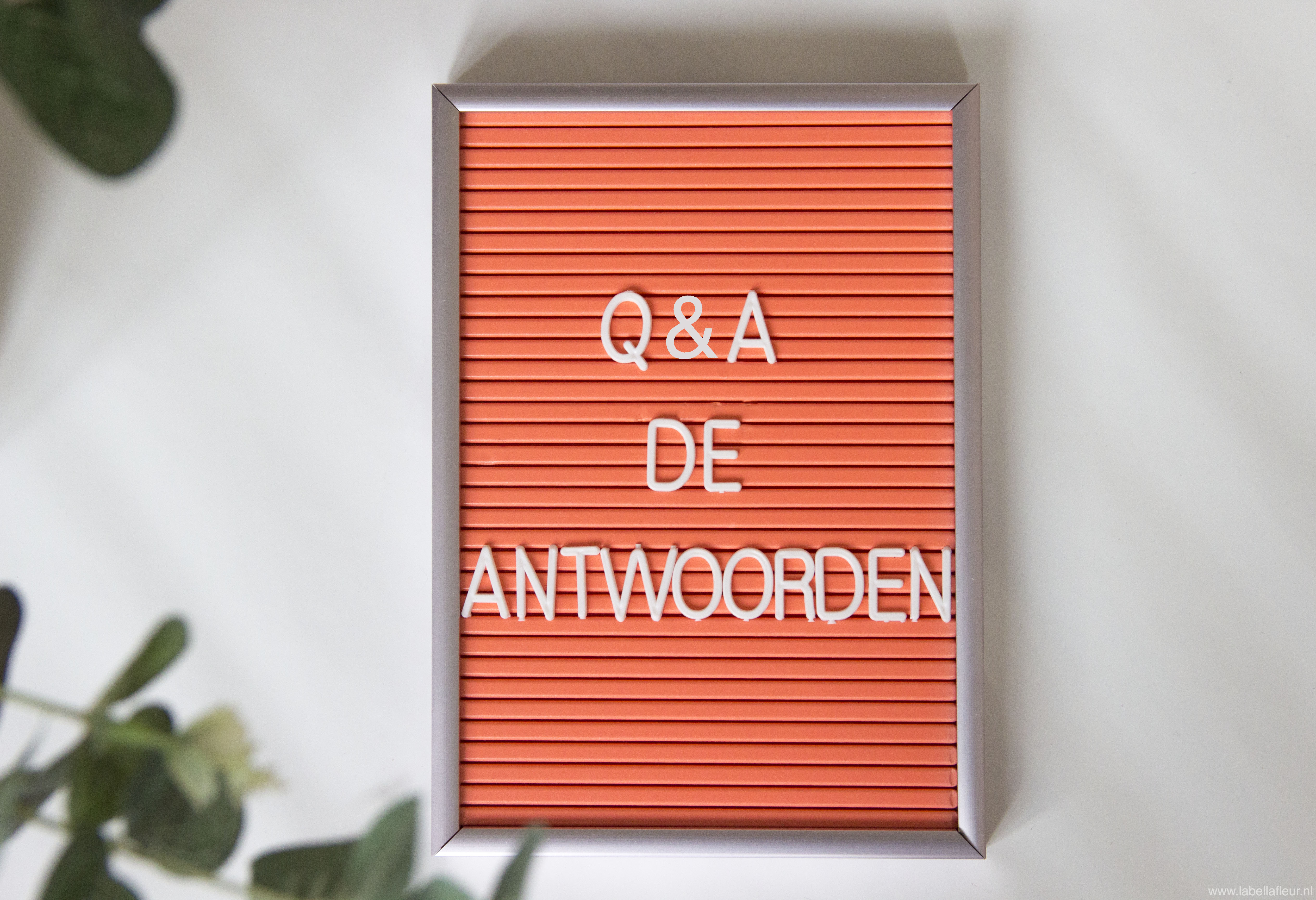 Personal, Q&A