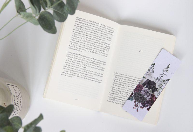 Boeken | 5 x waarom boeken lezen een toffe hobby is